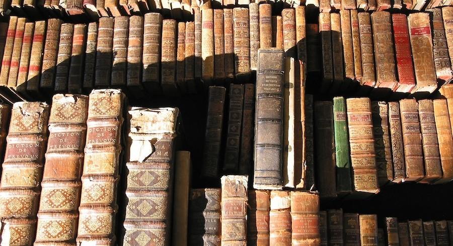 Magyar nyelv – vizsgaprogram és tanácsok a szóbeli vizsgára